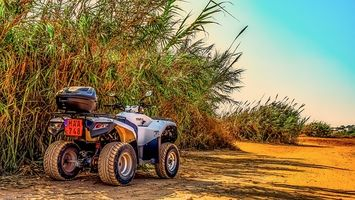 Buggies Lanzarote - 95494 news