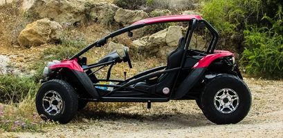 Buggies Lanzarote - 49655 news