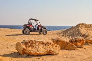 Buggies 4x4 - 67709 offers