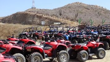 Buggies 4x4 - 65178 offers