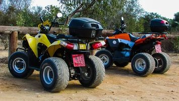 Buggies 4x4 - 91275 prices